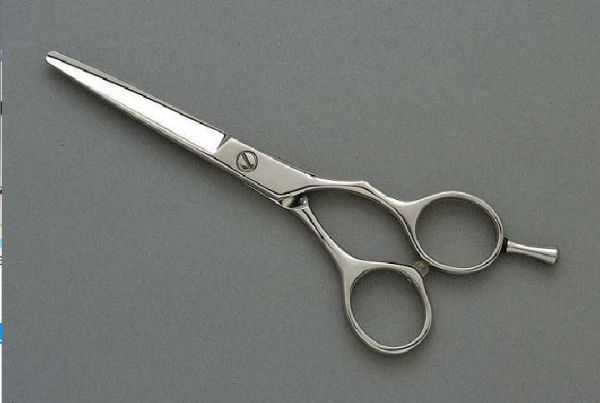 Shisato Dynasty Professional Hair Cutting Scissors